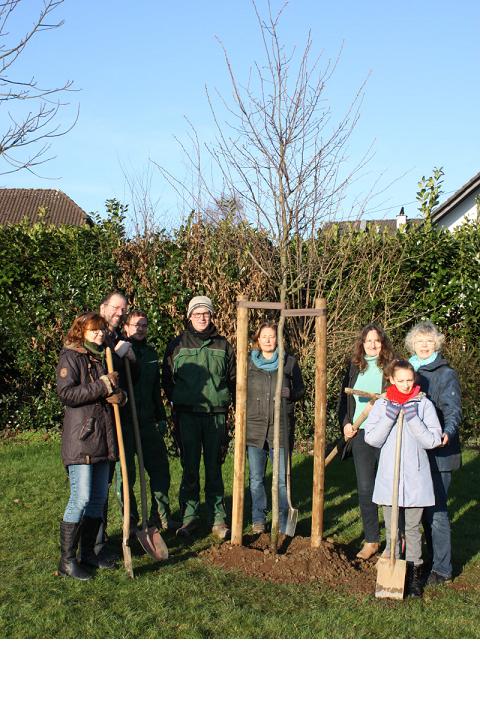 Baum für Baum – Klimaschutz vor Ort
