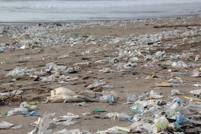 KW 12 2018 Müll-Umwelt-Strand