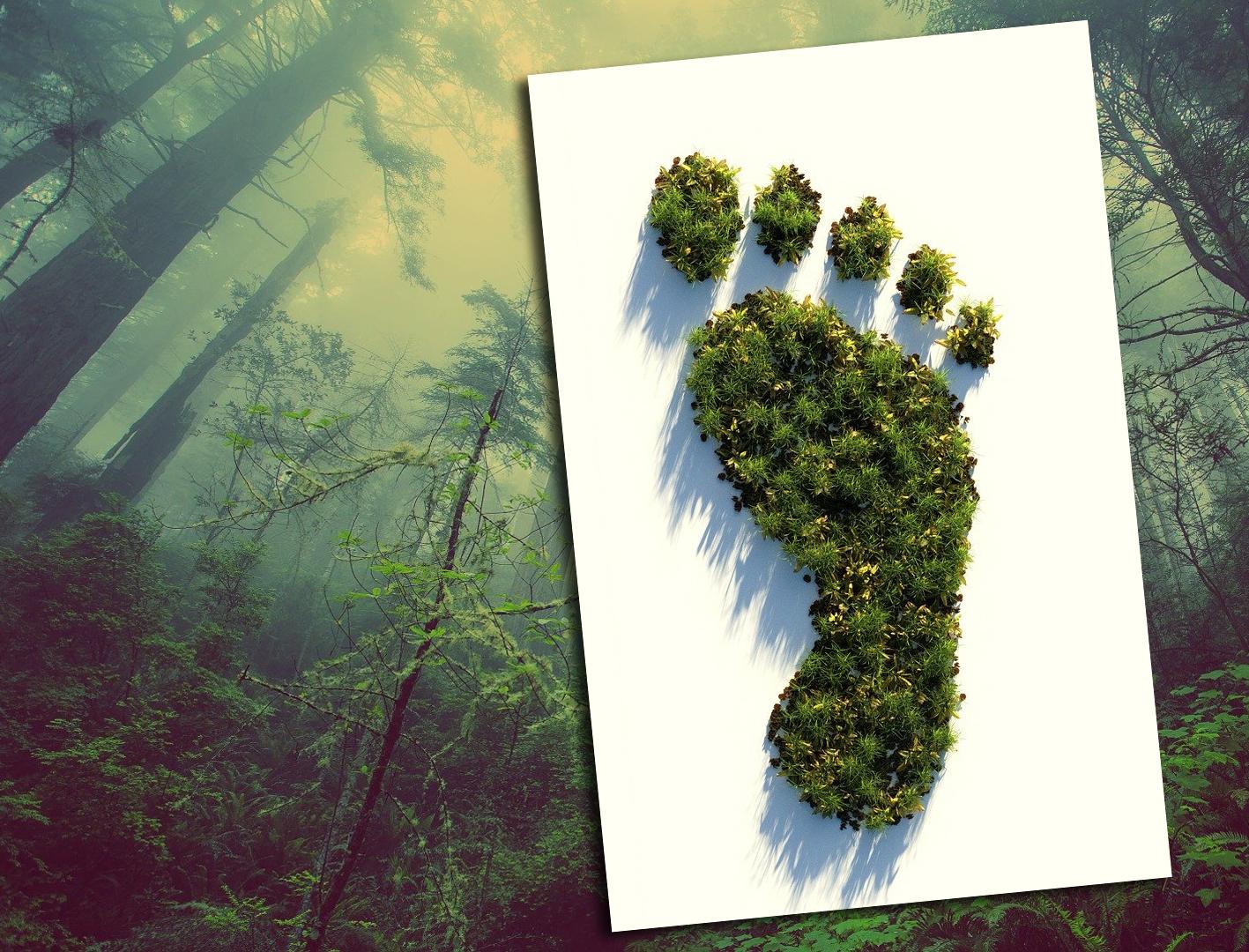 GRÜNE Politik im Zeichen des Ziels der Klimaneutralität